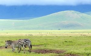 Ngorongoro 3