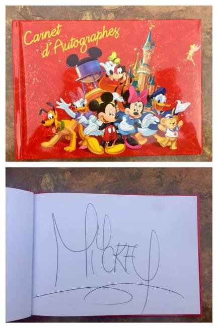 ttd Mickey